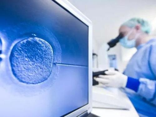 试管婴儿(IVF)