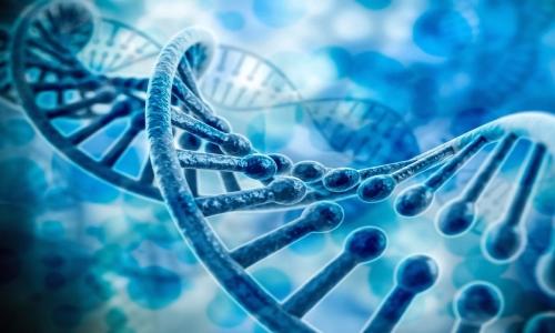 PGS/PGD基因染色体筛查