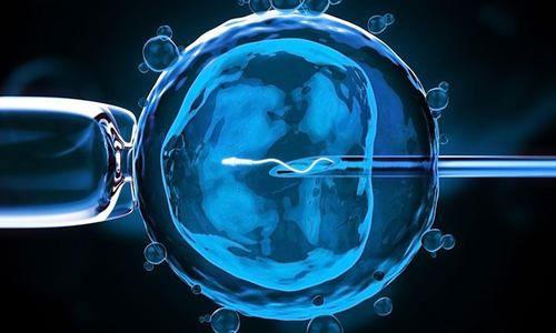 国内三代试管显微镜下单精子注射.jpg