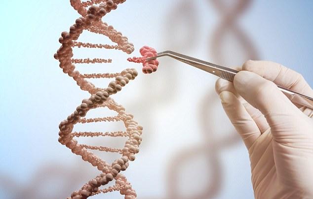 橄榄树生命——避免遗传疾病的传递