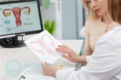 如何保养卵巢,这些损害卵巢因素你得知道