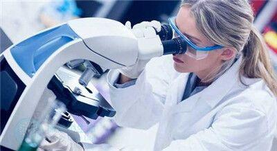 做试管婴儿期间,胚胎出现碎片化的原因是什么?